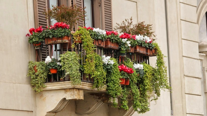 How Can You Get A Stunning Balcony Garden?