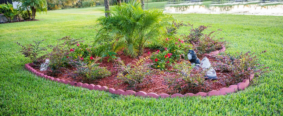 The List of Dos and Don'ts of Landscaping Around the Septic Tank!
