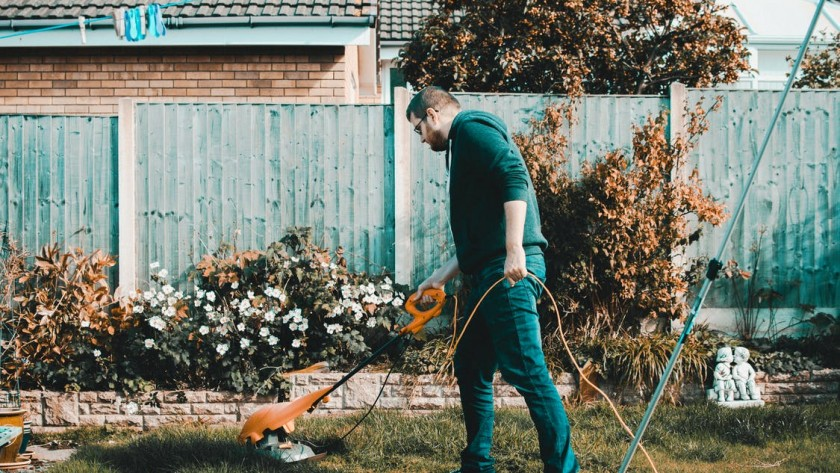 Revive your lawn after winter with these easy tips